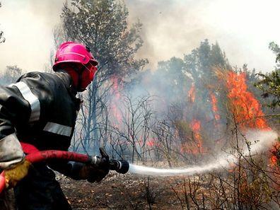 Vu les circonstances et pour éviter un départ d'incendie, chaucun devra «faire preuve d'une vigilance accrue en forêt» dans les jours qui viennent.