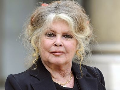 Brigitte Bardot, hier vor dem  Elysee-Palast in Paris, wünscht sich zu ihrem 80. Geburtstag von Präsident Hollande das Verbot aller französischen Pferdemetzgereien.