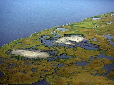 Vor allem küstennahe Landstriche und niedrige Inselstaaten sind von dem Anstieg bedroht.