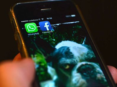 Le revenu des applications pour smartphone doit être multiplié par quatre au cours des quatre prochaines années. Et le Luxembourg doit pouvoir tirer son épingle du jeu. ⋌(PHOTO: AFP)