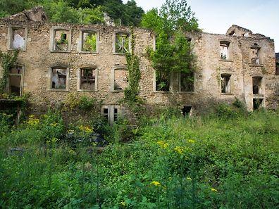 Mansfeld-Schlass, Foto Lex Kleren