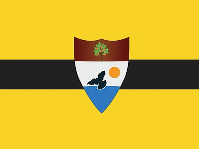 The 'official' Liberland flag