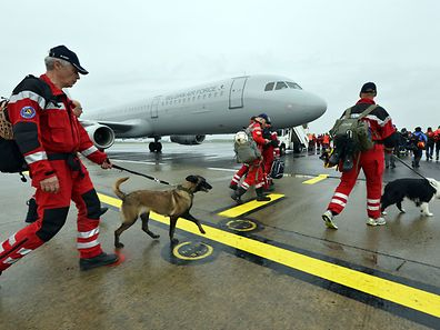 Some of the 62 members of the Dutch Urban Search and Rescue team get ready to leave with their tracker dogs at Eindhoven Airport