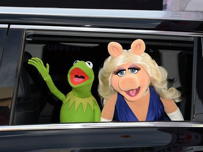 """(FILES) In this March 11, 2014 file photo, Kermit the Frog and Miss Piggy arrive for the world premiere of Disney's """"Muppets Most Wanted,"""" at the El Capitan Theatre in Hollywood, California.  A new piggy is in town, and this time her name is Denise. After Muppets star characters Kermit the Frog and Miss Piggy ended their relationship less than a month ago, both puppets have been given new love interests, according to People magazine. """"Kermit, who is still working with Miss Piggy on her late-night talk show Up Late with Miss Piggy - a situation that is being documented on the upcoming ABC series The Muppets - has been spotted around town numerous times with a head of marketing at ABC named Denise,"""" the magazine reported September 2, 2015. AFP PHOTO / ROBYN BECK / FILES"""