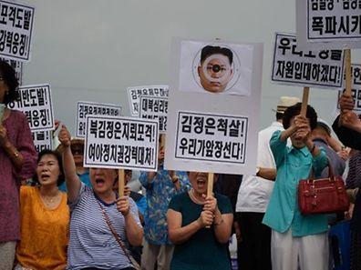 Demonstranten in der demilitarisierten Zone protestieren gegen das nordkoreanische Regime.
