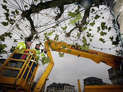An archive photo showing workers putting up Christmas lights on Avenue de la Liberté