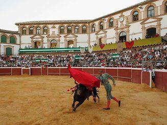 Die spanische Matadorin Mari Paz Vega bei einem Stierkampf bei Malaga im Jahr 2010.