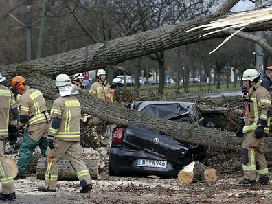 REFILE - REMOVING EXTRA WORD Firefighters remove parts of a tree from a street at Wedding district as Storm Niklas strikes in Berlin March 31, 2015.  One of the strongest storm fronts in years hit Germany on Tuesday, as Storm Niklas uncovered roofs, toppled scaffolding and caused severe disruption to rail services. REUTERS/Fabrizio Bensch