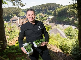 René Mathieu holds herbs and plants gathered from the wild