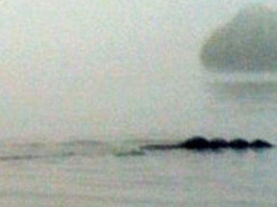 Is this the Loch Ness.... sorry..... Lake Windermere monster? Photo snapped of supposed creature in the Lake District, northern England