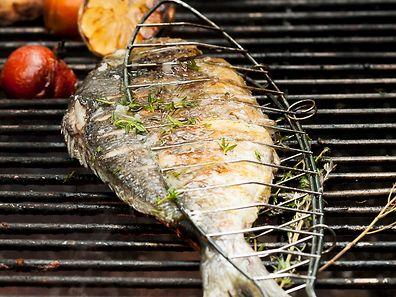 Eine Dorade lässt sich perfekt im Ganzen grillen. Mit frischen Kräutern und Kirschtomaten wird sie zum perfekten Abendessen.