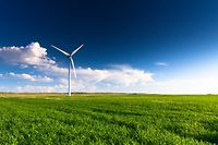 A wind turbine standing in a field.  Many more turbines can be seen in the distance.