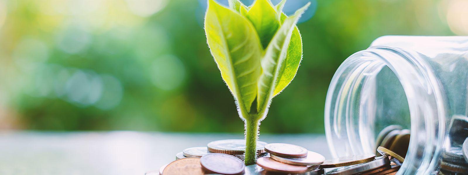 """Beim """"Global Green Finance Index"""", der die Verbreitung von grünen Finanzprodukten von großen Finanzzentren unter die Lupe nimmt, spielt der Luxemburger Finanzplatz vorne mit."""