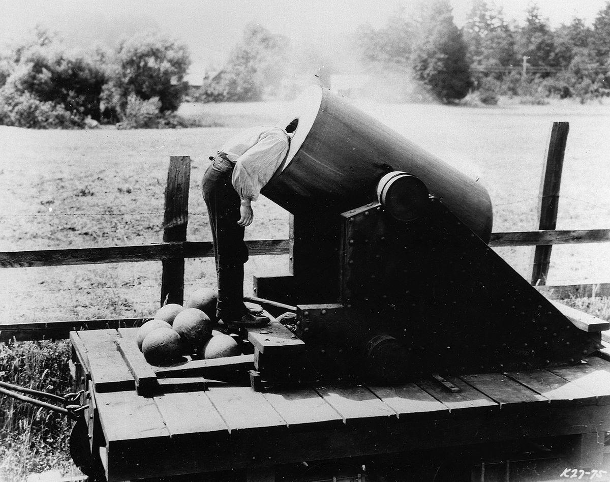 A découvrir dans ce vaste catalogue, une vingtaine de films de Buster Keaton.