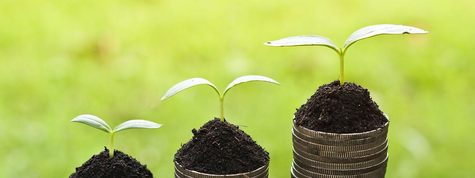 In die Zukunft investieren: Mit Green Bonds soll gegen den Klimawandel gekämpft werden.