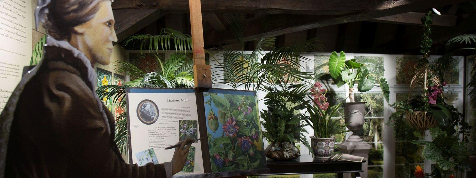 Eine Ausstellung über abenteuerlustige Luxemburger Naturforscher in Lateinamerika.
