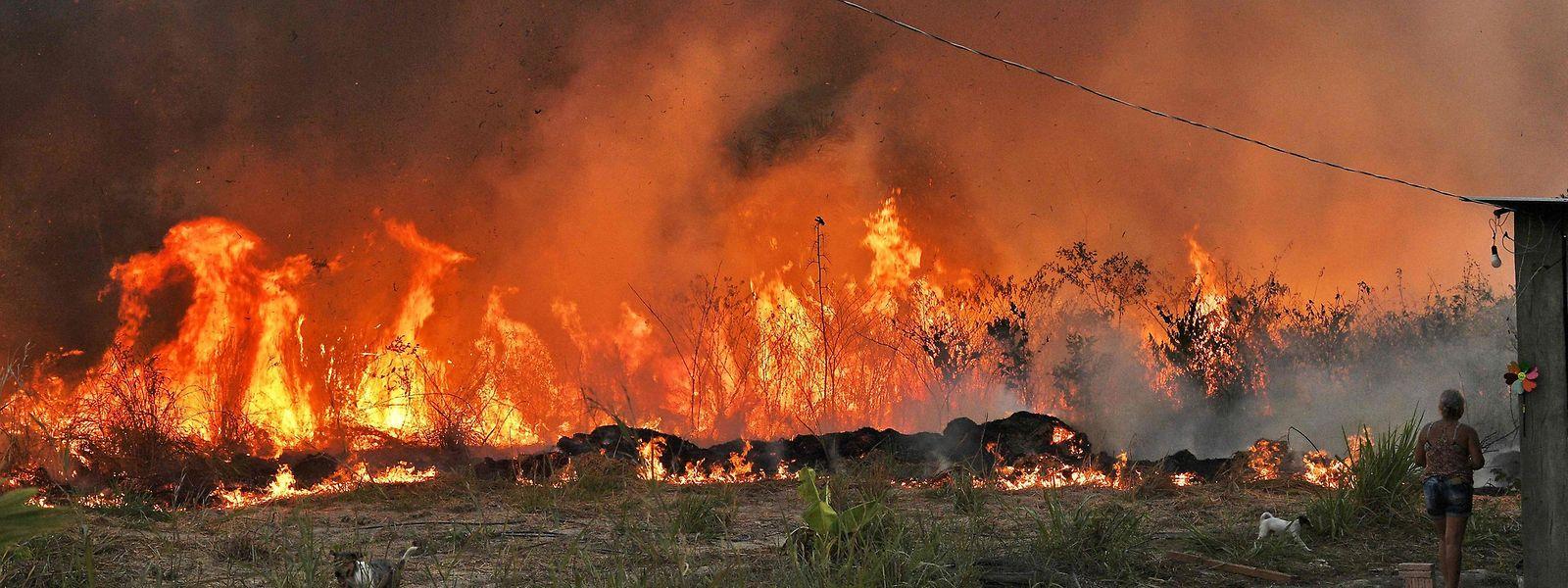 Les incendies géants en Australie et aux Etats-Unis ont pesé lourd dans la facture des dégâts l'an dernier.