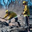 Bryce Briare (R) and Mike Manibusan (L) with the Marin County Fire Deptartment work on a smoldering hotspot as firefighters continue to build towards containment of the Wall fire in Oroville, California on July 10, 2017.  More than a dozen wildfires were raging across California July 10, 2017, forcing thousands of residents of the most populous US state to flee their homes. / AFP PHOTO / JOSH EDELSON