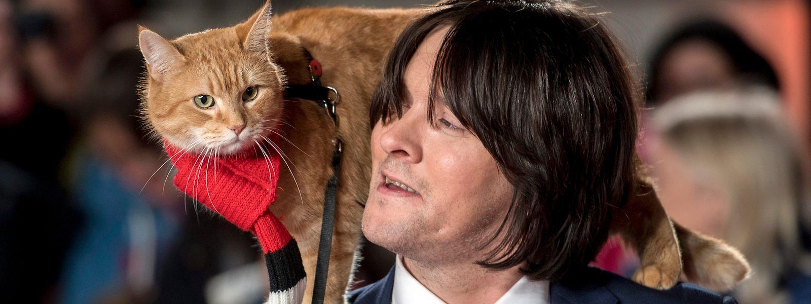 """Der britische Schriftsteller und Musiker James Bowen und seine Katze Bob treffen zur Weltpremiere von """"A Street Cat Named Bob"""" ein."""