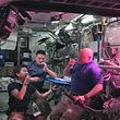 """TOPSHOTS This August 10, 2015 image from NASA TV shows L-R: Japan Aerospace Exploration Agency (JAXA) astronaut Kimiya Yui, with NASA astronauts Kjell Lindgren and Scott Kelly as they eat red romaine lettuce grown on board the International Space Station. Astronauts living at the International Space Station are about to take their first bites of space-grown lettuce, in what scientists described as another step toward enabling human missions to Mars. The red romaine lettuce was grown in a special plant-growing box called Veg-01, and was flown to space aboard the SpaceX Dragon cargo ship. The seeds are contained in rooting pillows, and were """"activated"""" by Kelly on July 8, NASA said. The plants grew for 33 days before being harvested.   AFP PHOTO / HANDOUT / NASA TV                     == RESTRICTED TO EDITORIAL USE / MANDATORY CREDIT: """"AFP PHOTO / HANDOUT / NASA TV""""/ NO MARKETING / NO ADVERTISING CAMPAIGNS / DISTRIBUTED AS A SERVICE TO CLIENTS =="""