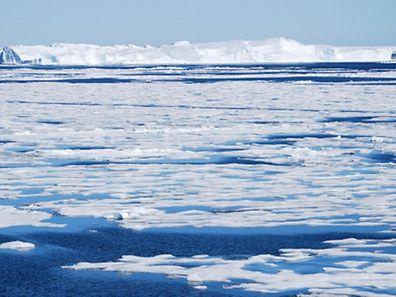 meereis-arktis