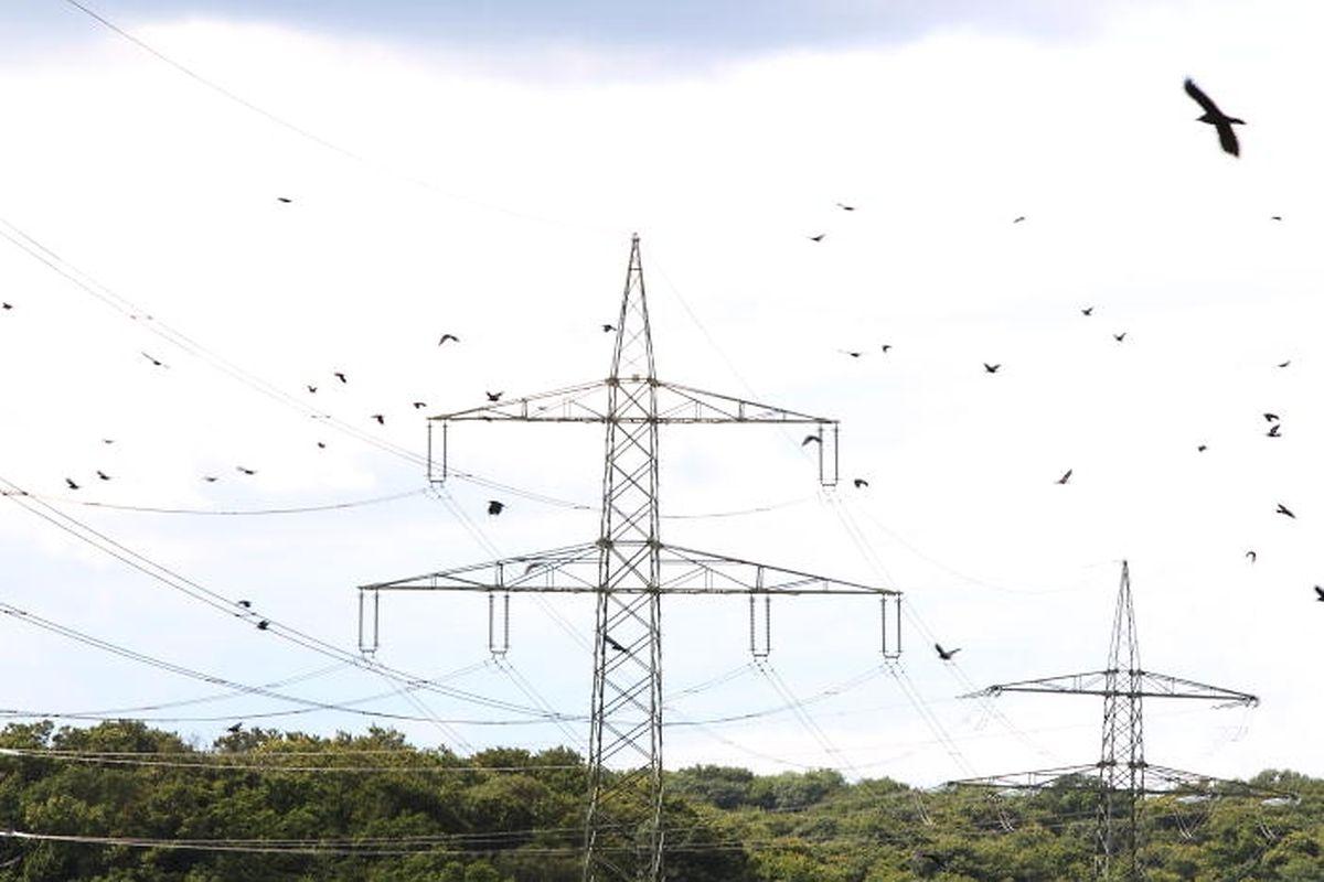 Bei den Energiepreisen kritisiert die UEL die relativ hohen Kosten für Elektrizität und Gas.
