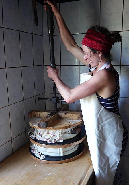Lotta Bess (28) befestigt eine Käsepresse auf zwei Käselaiben. Damit wird die Molke aus dem Käse gepresst. Sie hat den Käse selbst produziert, aus selbst gemolkener Milch.
