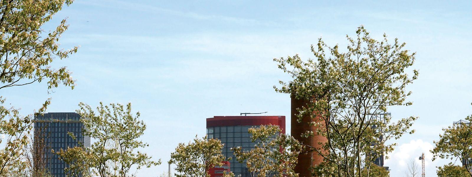Seit 20 Jahren wachsen und gedeihen neue Gebäude in Belval.