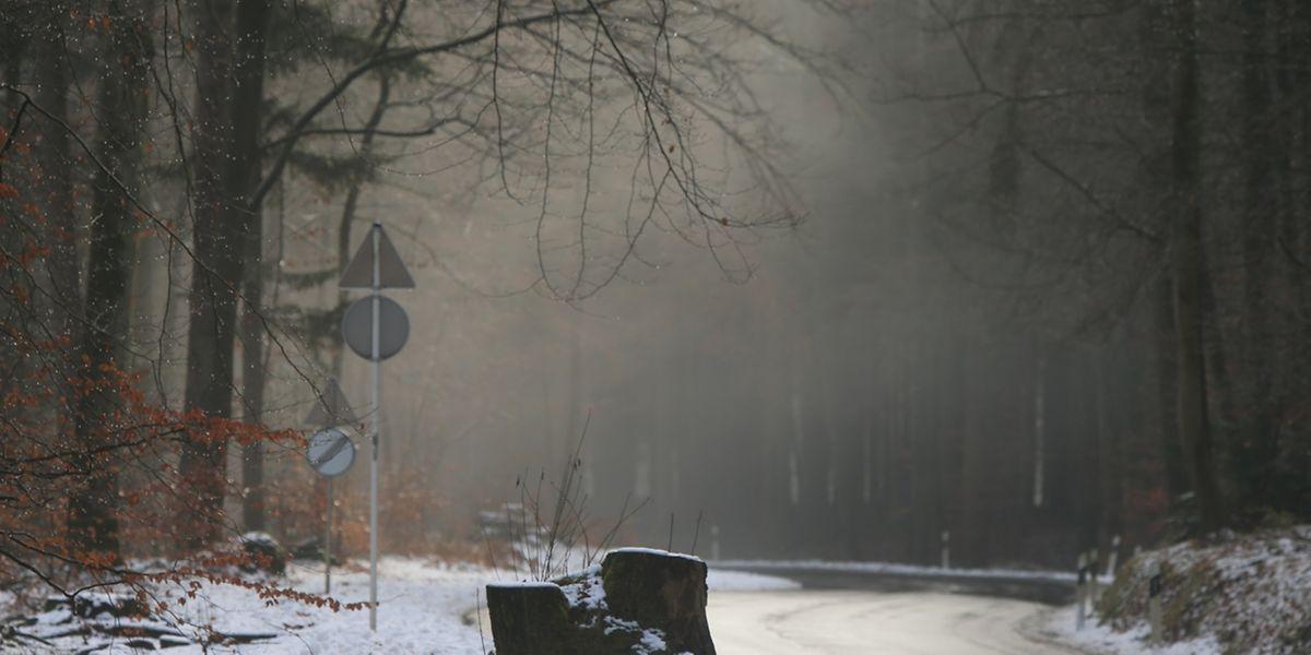 Bis zu 15 Zentimer Schnee soll am Wochenende im Norden des Landes liegen bleiben.