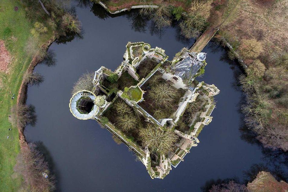 Au coeur de toutes les attentions, le château envahi par la végétation n'attend que de renaître dans son ancienne gloire.