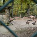 Quelle vie au Parc Merveilleux de Bettembourg lorsqu'il est fermé?  Luxembourg le 23.10.2017 ©Christophe Olinger