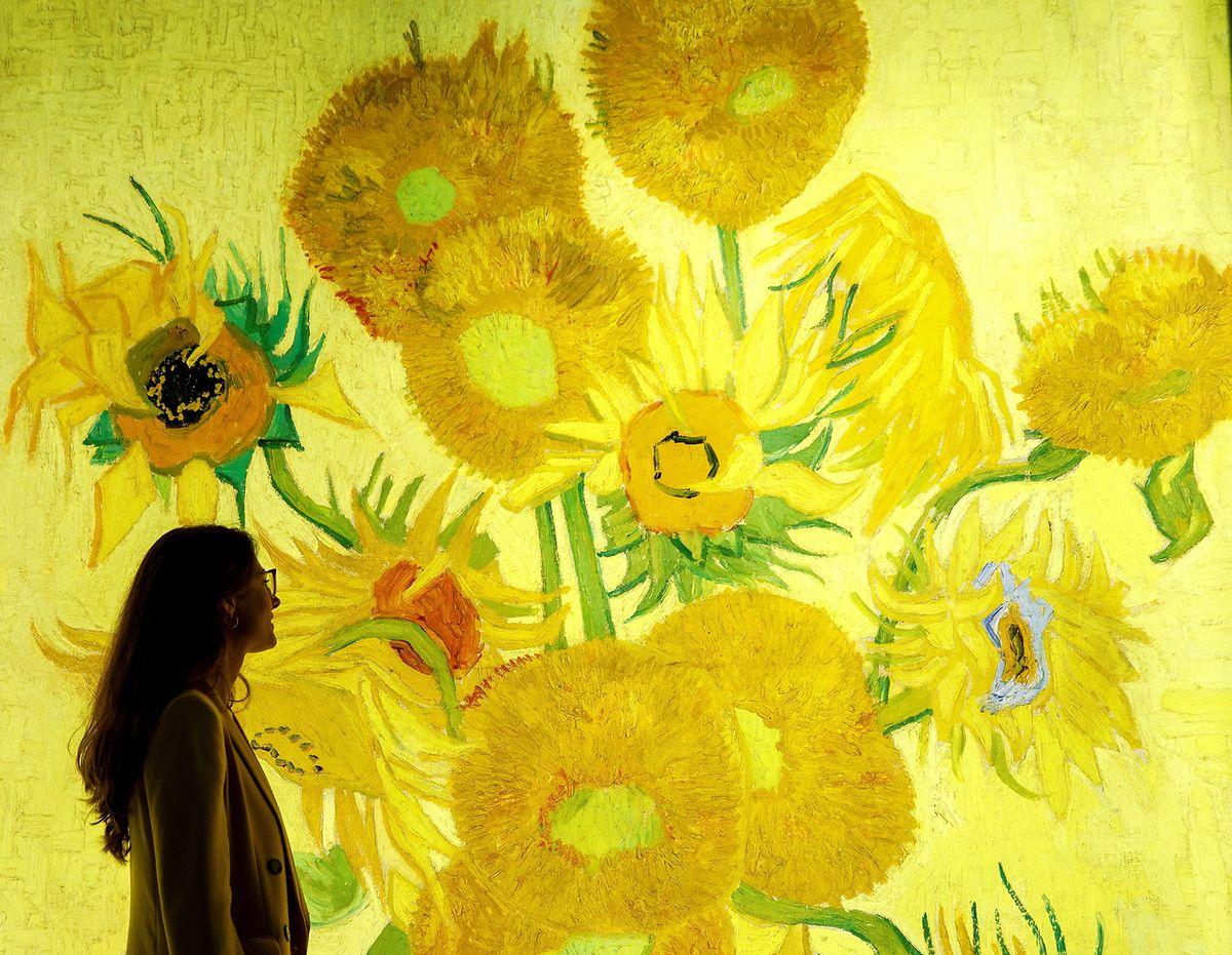 Gelb-leuchtende Sonnenblumen von Vincent van Gogh, die eine interaktive Schau derzeit im Londoner South Bank Center präsentieren sollte.