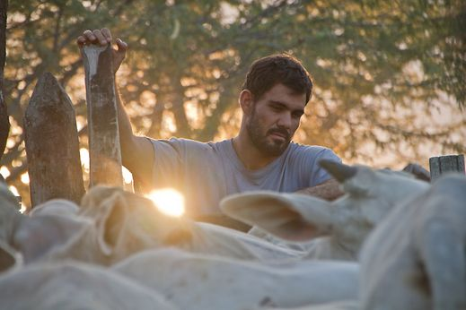 """Brazilian-born director Gabriel Mascaro has already had his work featured in various museums, including the Guggenheim. In """"Neon Bull"""", he has a particular talent in the way he uses light."""