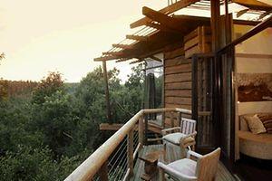 """Le """"bar perché"""" fait partie des idées majeures pour promouvoir le tourisme dans les massifs forestiers de Wallonie."""