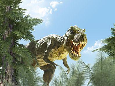 Die pflanzenfressenden Dinosaurier konnten sich offenbar länger an ihre Umgebung anpassen.