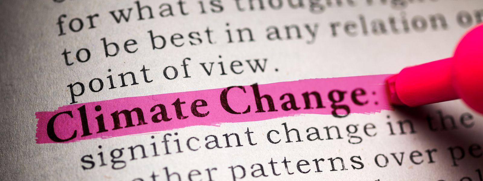 Deux jeunes étudiantes belges veulent que l'urgence climatique figure au programme dans les écoles du pays.