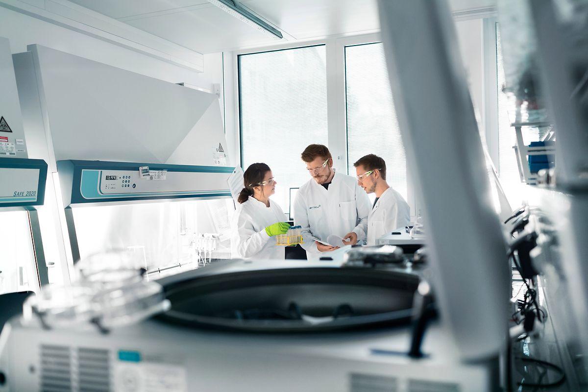 Erfahrung hat das Unternehmen mit der Entwicklung individualisierter Krebstherapien.