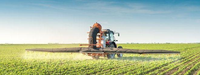 Die Vebraucher wollen weniger Pestizide, aber die Landwirtschaft steht unter Leistungsdruck.