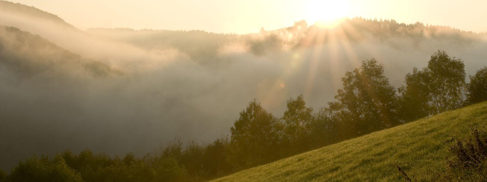 Die Ourregion ist Naturparadies und dynamischer Entwicklungsstandort zugleich.