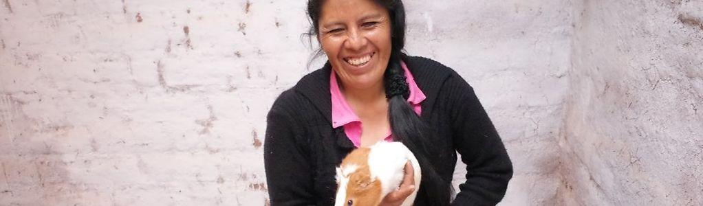 In Peru werden Meerschweinchen nicht als Haustiere, sondern zum Verzehr gezüchtet.