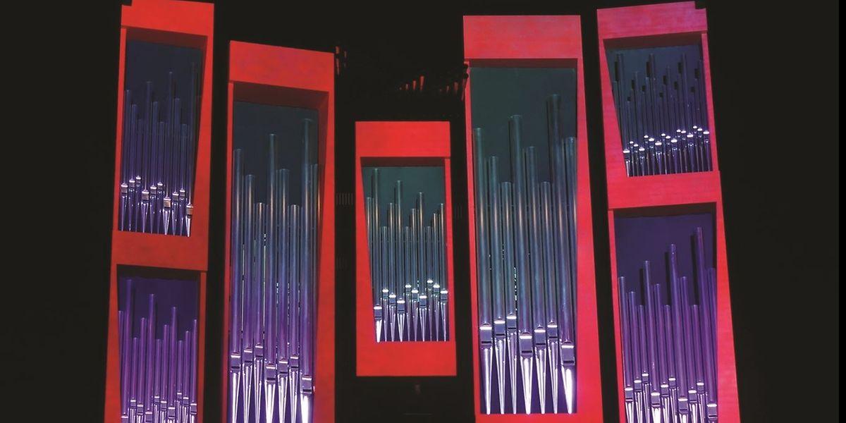 Farbverläufe, Schattenwirkungen, Kontraste: Die Philharmonieorgel erstrahlt in besonderem Licht.
