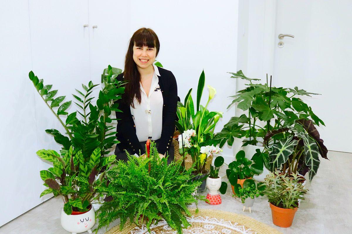 As plantas chegaram ao apartamento citadino de Sónia Carvalho muito antes da pandemia, mas mesmo assim no último ano duplicou o número de exemplares e passou a ter todas as divisões da casa com estes apontamentos de verde.