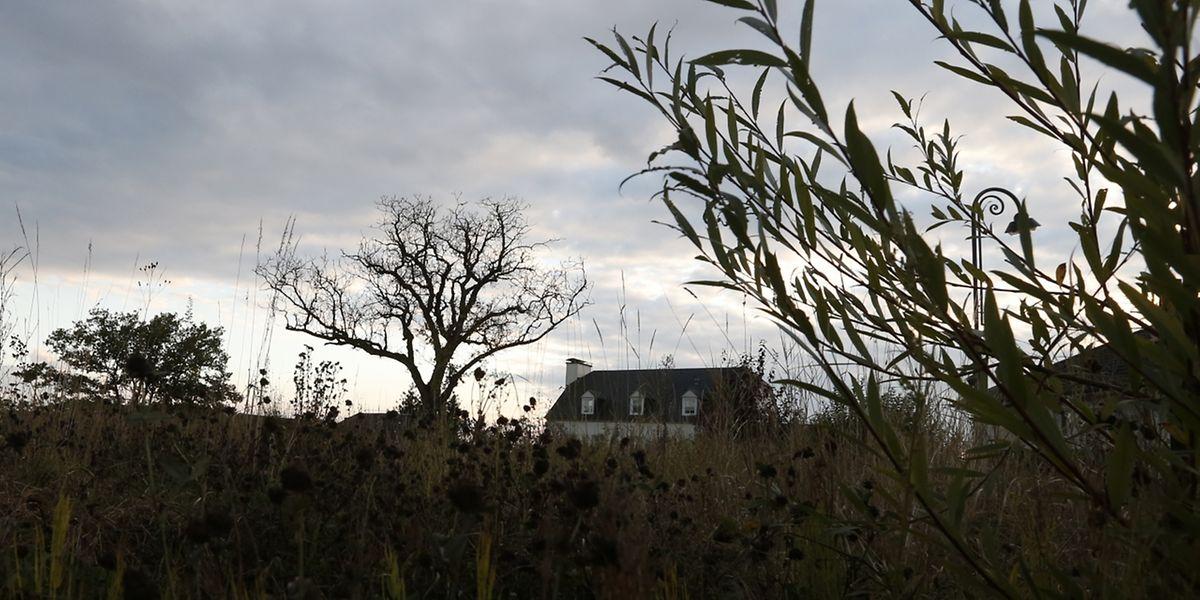 Das Haus des Opfers in der Hasseler Rue Killebierg wurde vor Jahren abgerissen. Auf dem Areal ist ein Immobilienprojekt geplant.