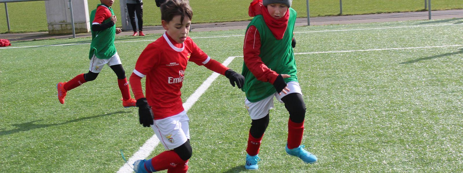 O futebol está de volta para os mais pequenos na Academia do Benfica no Luxemburgo.