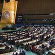 Apesar de tudo, a resolução foi aprovada com os votos favoráveis de 123 países, registando-se, ainda, 16 abstenções.