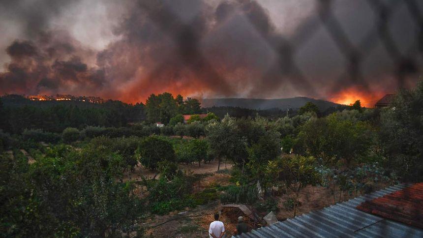 Vinte concelhos do continente em risco 'máximo — Incêndios