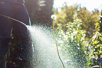 Der Gärtner arbeitete jahrelang ohne adäquaten Schutz mit Pflanzenschutzmitteln.