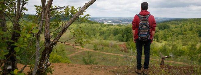 Im Süden des Landes gibt es nicht nur diverse Naturschutzgebiete wie das ehemalige Tagebaugebiet Giele Botter (Foto), sondern auch viele private und kommunale Initiativen im Sinne der Natur, argumentiert Umweltministerin Carole Dieschbourg.