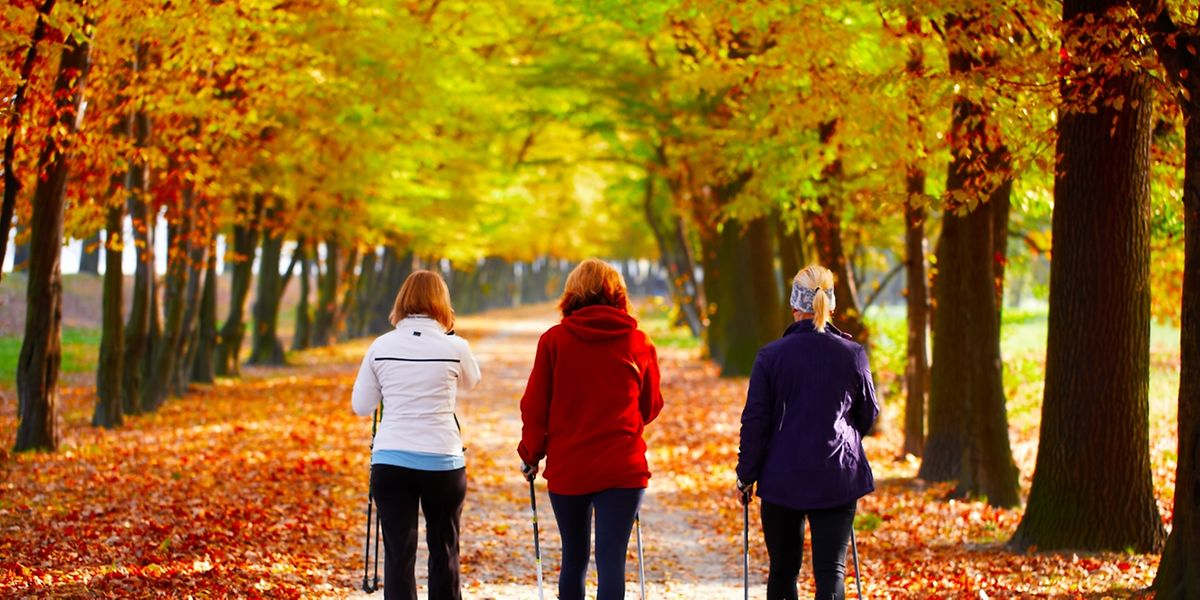 Regelmäßige Bewegung fördert die Gesundheit und hält fit.