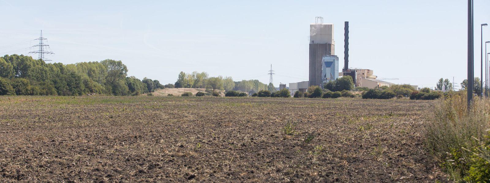 Die Großmolkerei sollte in der Industriezone Wolser gebaut werden.